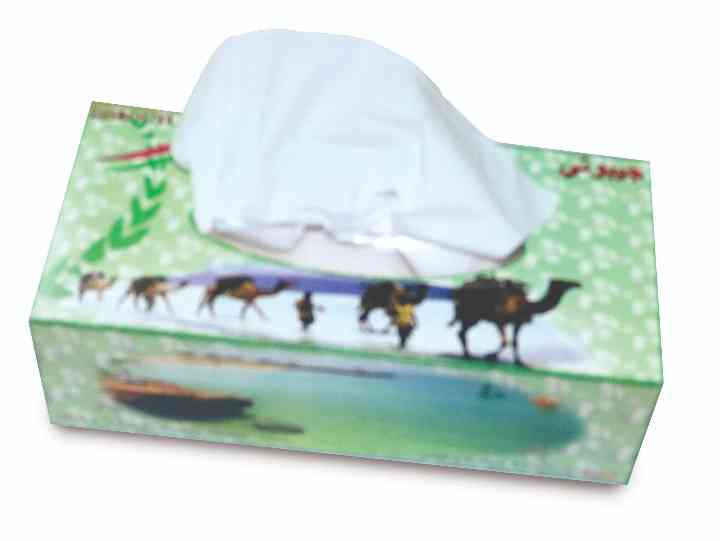 Inmaa Facial Tissue - 200 x 2 Ply