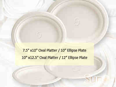 Bagasse Plates (Compostable Disposables)
