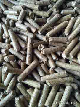 Wood Chips, Wood Pellets and Pulpwood Logs