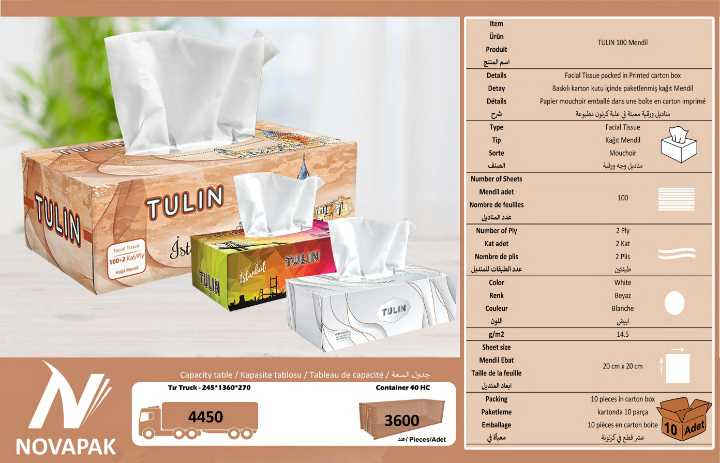 TULIN 100 Facial Tissue Cartons
