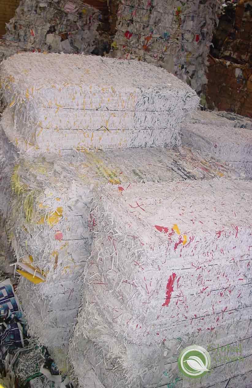 Multi Grades Waste Paper