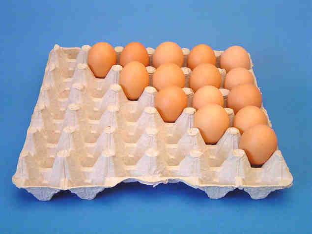 Egg Cartons& Egg Trays