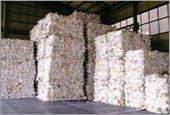 Waste Magazine Paper