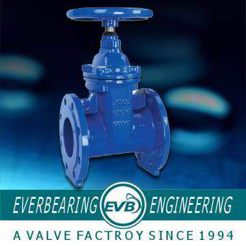 Cast Iron 125LB Gate Valve