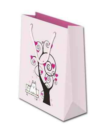 Fashion design paper bag,Gift bags