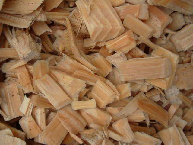 Wood Chips for Pulping & Pellet Products